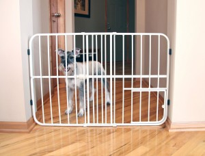Expandable Gate For Dogs