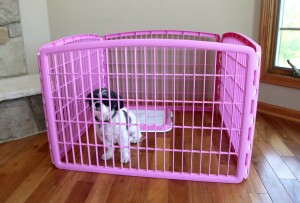 4-Panel Pink Containment Pet-Pen