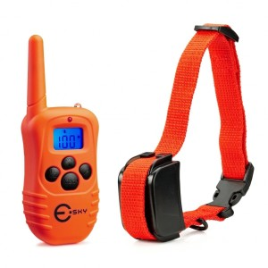 Best Shock Collar For Big Dogs