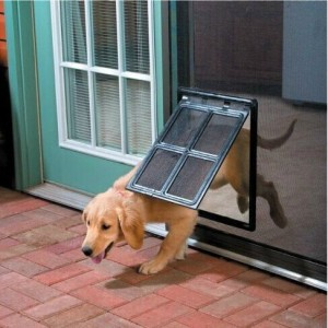 Doggie Door For Screen Doors