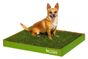 Doggielawn Disposable Potty
