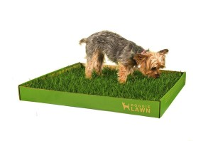 Indoor Grass Pee Pad For Dogs