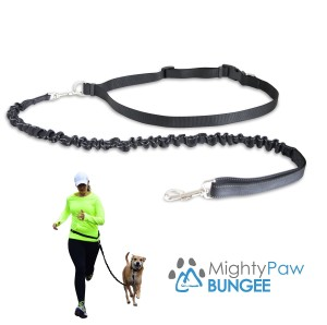 Mighty Paw Leash