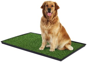 Prevue Tinkle Turf