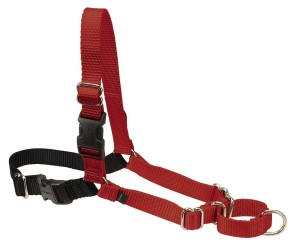 The Easy Walk Harness