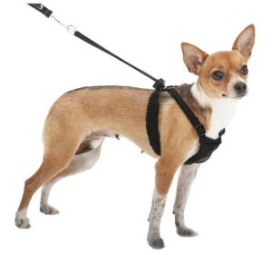 Sporn Mesh Anti-Pull Harness