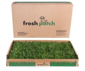 Fresh Patch Disposable Potty