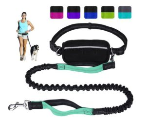 LANNEY Hands Free Dog Leash for Running Walking Training Hiking, Dual-Handle Reflective Bungee