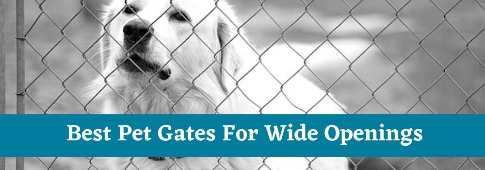 Best Pet Gates For Wide Openings