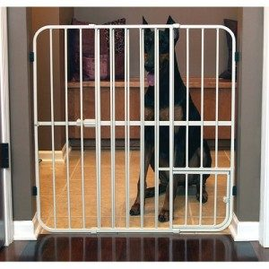 Carlson Expandable Pet-Gate