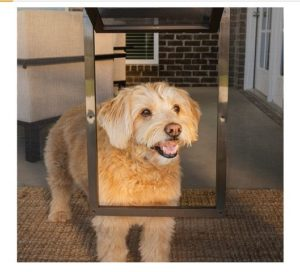 PetSafe Door For Small Pets