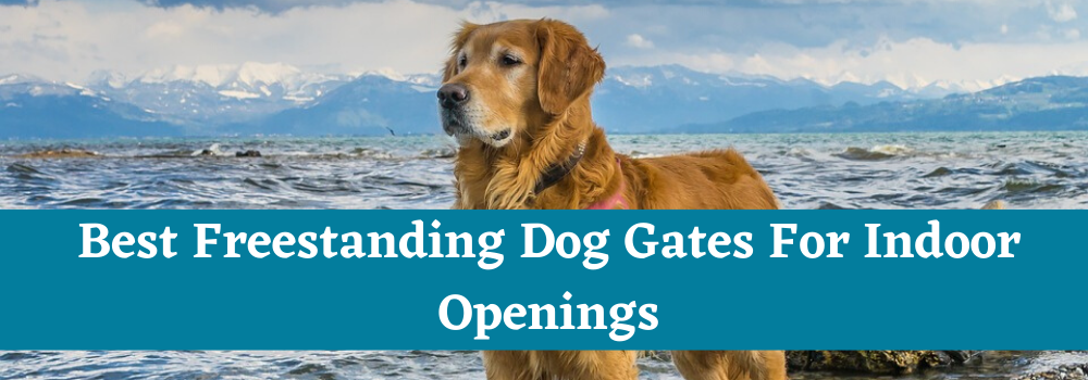 Best Freestanding Dog Gates For Indoor Openings