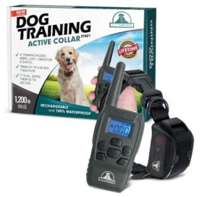 Pet Union PT0Z1 Premium Dog Training Shock Collar