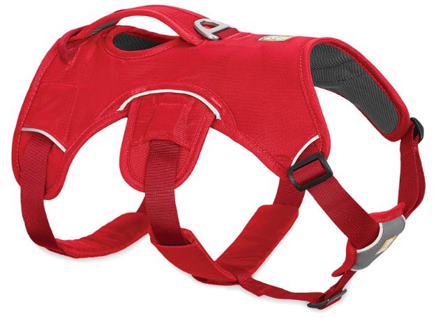 Ruffwear Web Master Secure Harness
