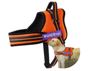 PetLove Soft Leash Padded No Pull Dog Harness