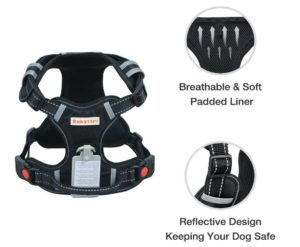 Babytrl Big Dog Harness