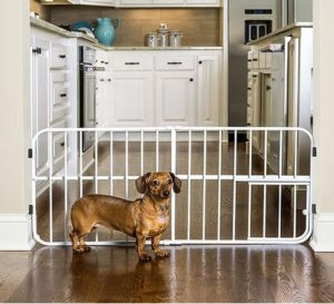Carlson Pet Products Lil' Tuffy Expandable Gate
